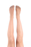Legs. With bottoms of nylon Stock Photos