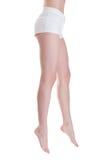 Legs Royalty Free Stock Photos
