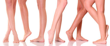 Legs royalty free stock photography