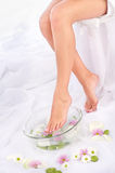 Legs in aromatherapy bowl Royalty Free Stock Images