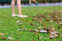 Legs Asian girl. stock images