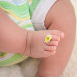 Legs baby with chamomile on the fingers.  Royalty Free Stock Image