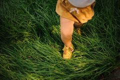 Legs of a baby girl in yellow shoes on green grass. royalty free stock photography