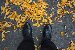 Legs with black shoes on yellow foliage Stock Photos