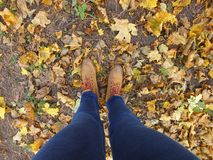 Legs in boots on leaves. Legs in boots on the autumn leaves Royalty Free Stock Photography
