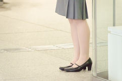 Legs of a business woman Stock Photos