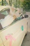 Legs in car window Royalty Free Stock Photo
