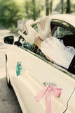 Legs in car window, tinted. Bride put legs in car window, tinted Royalty Free Stock Photography