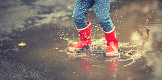 Legs of child in red rubber boots jumping in autumn puddles Royalty Free Stock Photo