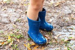 Legs of child wearing pair of blue rubber boots in muddy backyard stock images
