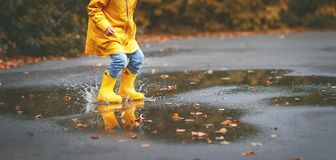 Legs of child in yellow rubber boots in puddle in autumn royalty free stock images