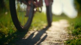 Legs of cyclists, two young girls passing on a path in a green forest on a Sunny day, slow-motion. Shot stock footage