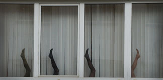 Legs of  dummy in the window Royalty Free Stock Photography