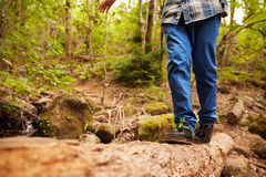 Legs and feet of boy balancing on a fallen tree in a forest Stock Photography