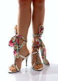 Legs of girl in beautiful shoes Royalty Free Stock Images