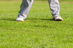 Legs of golfer on green field Stock Images