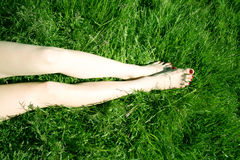 Legs on grass Stock Photography