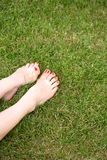 Legs and grass Stock Images