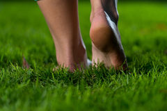 Legs On The Grass Royalty Free Stock Photography