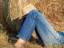 Legs with jeans in the field Royalty Free Stock Photography