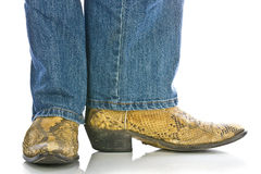Legs in Jeans and snakeskin Cowboys Boots Royalty Free Stock Photo