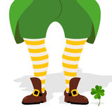 Legs leprechaun and clover. Green frock coat and striped socks. Stock Image