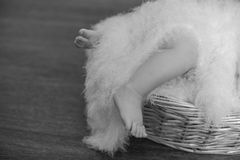 Legs a little baby in  basket Stock Photo