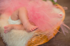 Legs a little baby in  basket Stock Photography