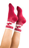 legs long female in striped socks isolated Stock Images