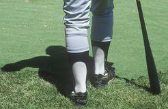 Legs of a major league baseball player Royalty Free Stock Photo