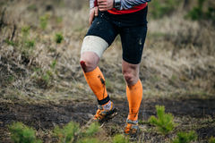 Legs male athlete running on forest trail Stock Photo