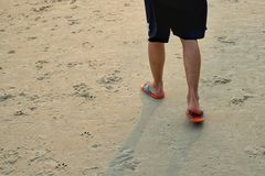 Legs of a man with slipper walking on the sand beach. In the evening time sunset Royalty Free Stock Images