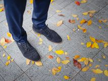 The legs of a man in a suit and shoes in the street in the autumn. View from above. Royalty Free Stock Photos