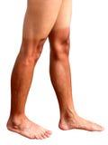 Legs of man sunburned Stock Photo