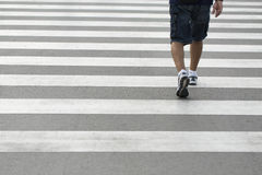 Legs of a man wearing shorts and sneakers walking across a zebra crossing Stock Images