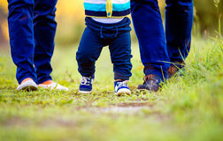 Legs of mother, father, their son making first steps. Close up of legs of mother, father and their little son making first steps outside in green sunny nature Royalty Free Stock Photos