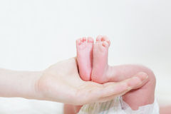 Legs of the newborn baby Royalty Free Stock Images