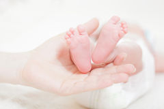 Legs of the newborn baby Stock Images