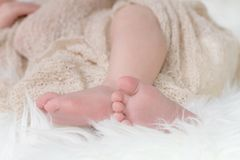 The legs of a newborn baby Royalty Free Stock Photography