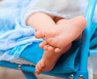 Legs newborn baby Stock Image
