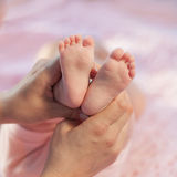 Legs newborn in parents hand. Baby legs. Legs newborn in parents hand Royalty Free Stock Image