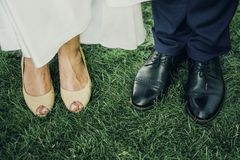 Newlyweds staying on the grass royalty free stock image