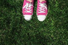 Legs in old pink sneakers on green grass. View from above. The c stock image