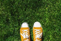 Legs in old yellow sneakers on green grass. View from above. The royalty free stock photos