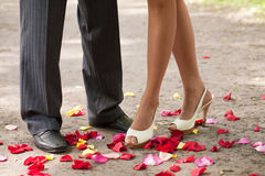 Legs over petals Royalty Free Stock Photography