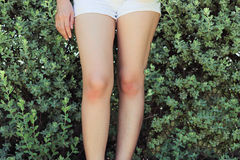 Legs part of woman. Royalty Free Stock Photos