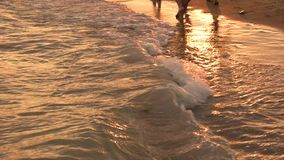 Legs of people go by sea. Sea evening walk. Shine on the water at sunset. Summer holidays stock video