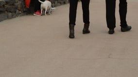 Legs Of People Walking stock footage