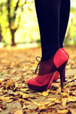 Legs with pink high-heels in park. Legs with pink high-heels in outdoor shooting Royalty Free Stock Image