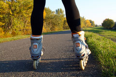 Legs in roller skates - back view Stock Images
